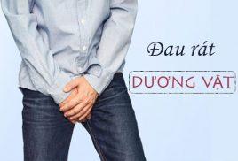 607aa39511006fe59e123ff8 Dau Rat Duong Vat